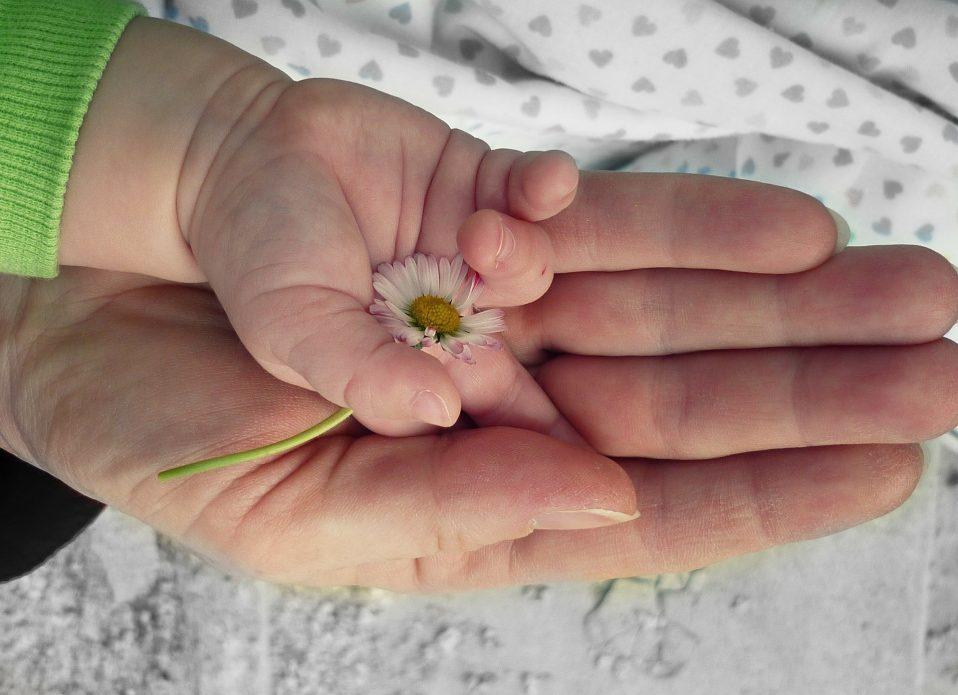 Verantwortung & Treue (Foto: 28703/Pixabay)